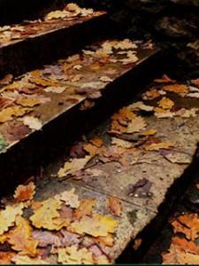 Осінні сходи, що ведуть до згадок, сліз та суму... Ніхто не думав, що так станеться, але так сталося