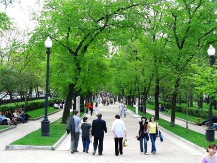 На Тверском бульваре так красиво, особенно когда цветут липы вовсю :)