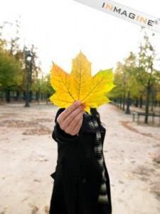 Я люблю осінь не зважаючи ні на що і на погоду теж