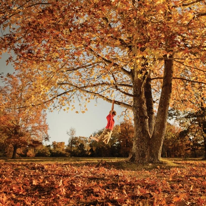 гарне фото осені, осінні краєвиди, осіння природа, осенний стих, стихи об осени, осенний пейзаж