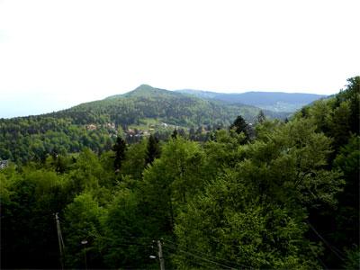 гори карпати, карпатські гори, полонини і смереки, гори звисока, фото гор, пташиний політ