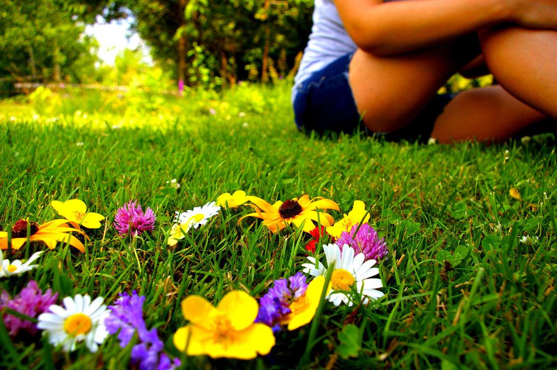 Хочу сидеть на траве и кушать шашлыки :)