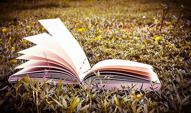 Тут може бути вами обраний вірш. Фото:  auimeesri / Flickr