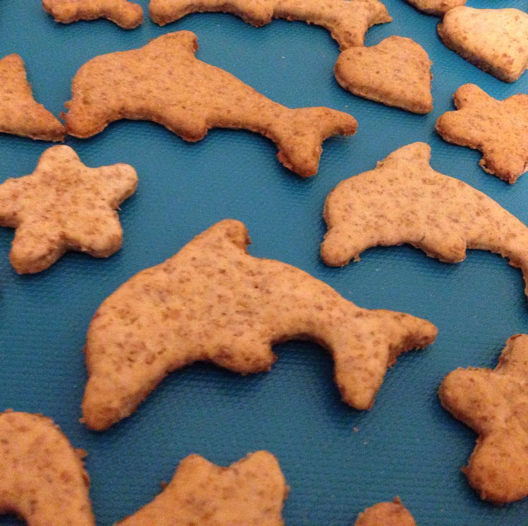 Цех по випуску дельфінів у вільне плавання :) #cookies