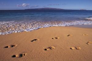 Отдых в студенческой компании на море - это очень весело и приятно в летнюю пору каникул :)