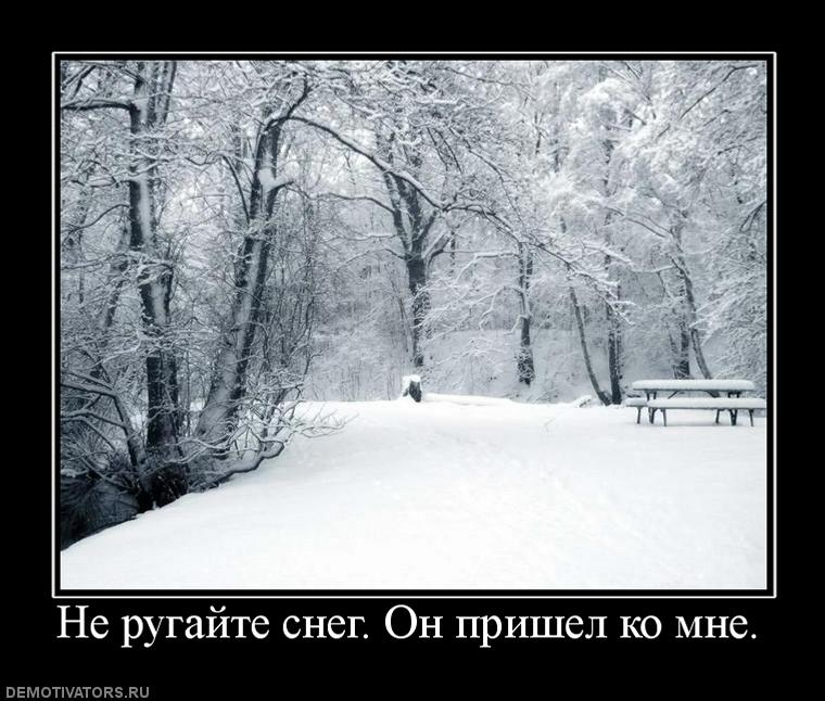 Зима красуня. Вона уміє зачарувати снігом, заворожити білосніжністю, порадувати зимовими краєвидами