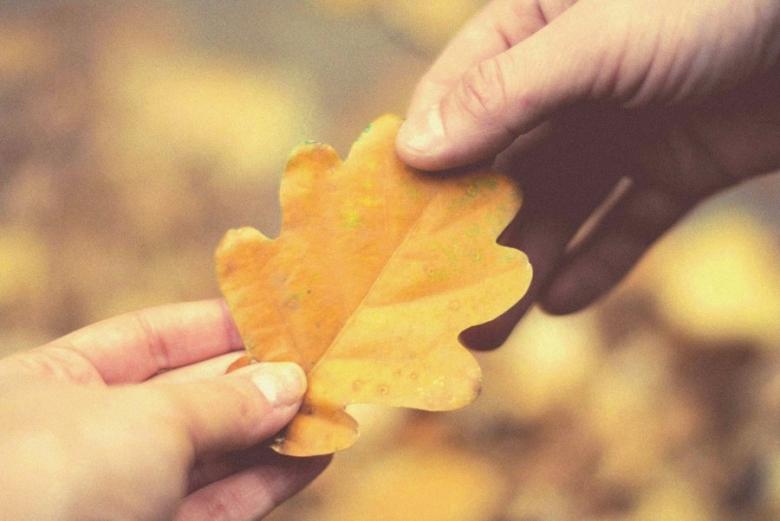 осінь, жовтий колір осені, фотографії осені, осіннє листя, сумні фото, філософське фото