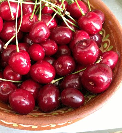 черешні, bird cherries, черешня