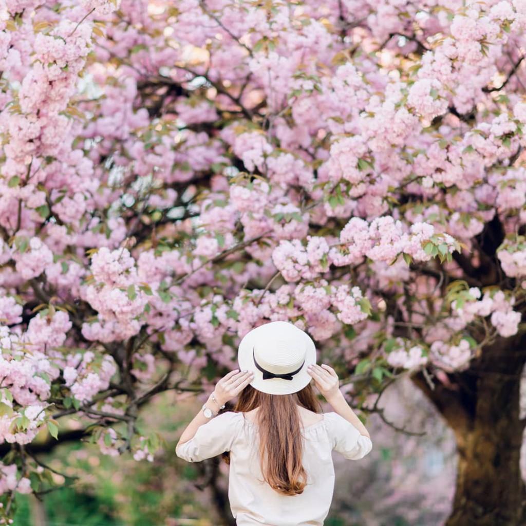 Весна прийшла до тебе іздаля. Фото-подяка - tegza.alexandr