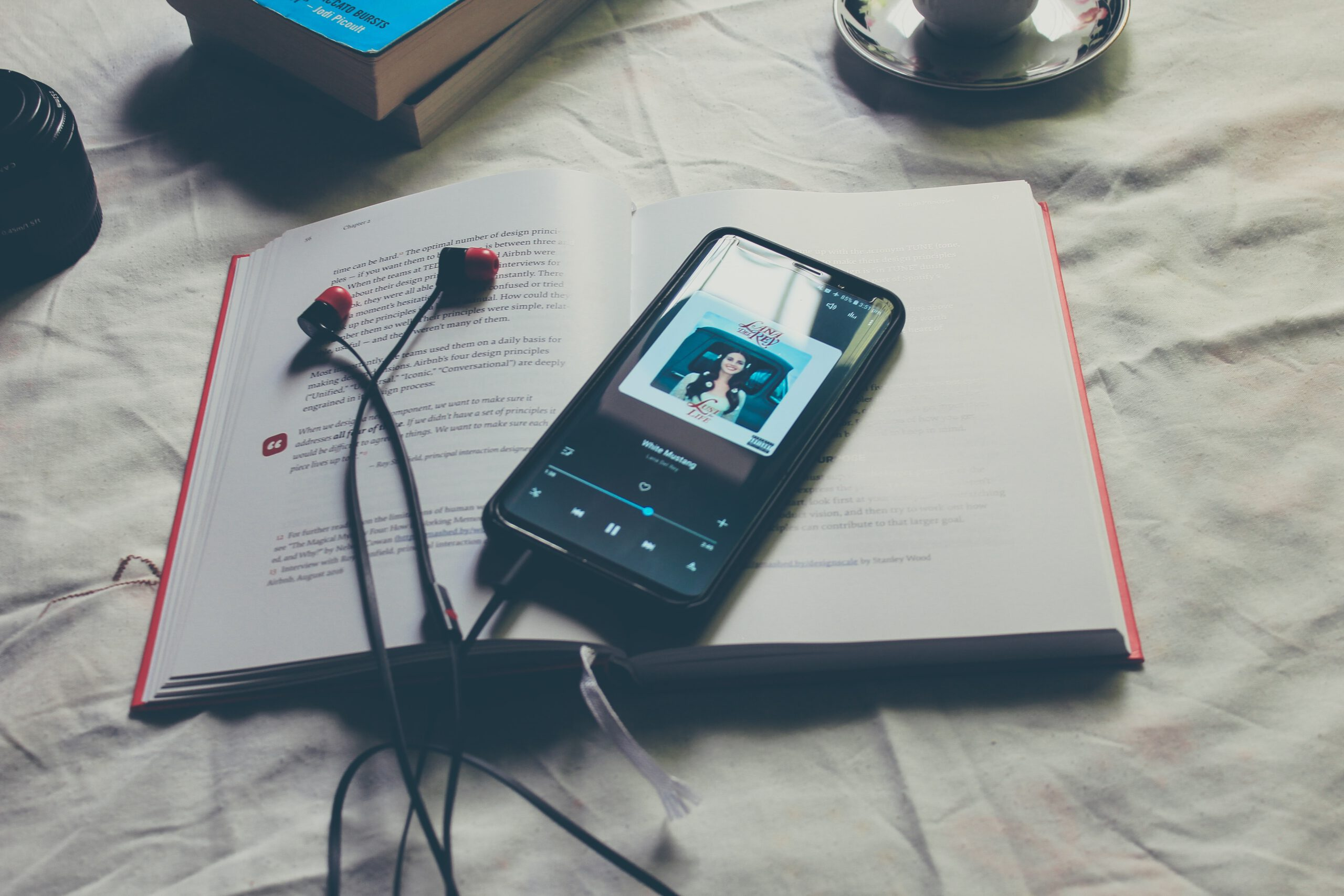 У вік коронавірусу і технологій Літературні Читання мають такий-от формат. Фото Mohamed H